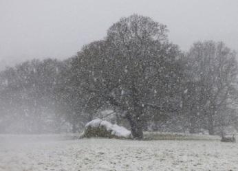 chatsworth-snow-11