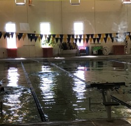 belton-lap-pool